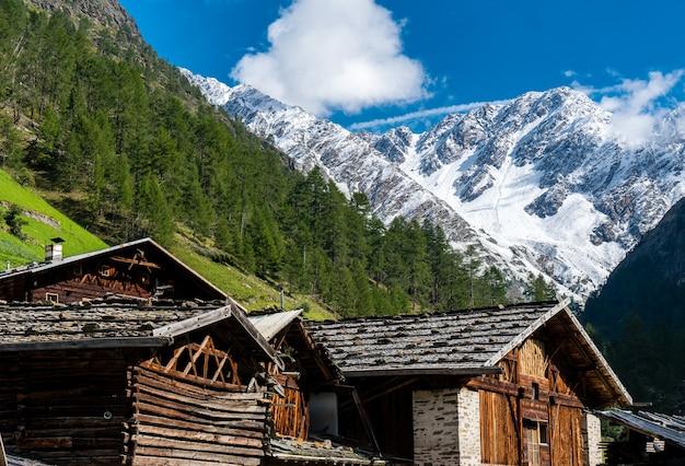 Hütten in der natur