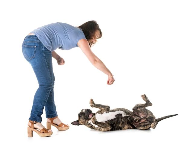 Hund, besitzer und gehorsam