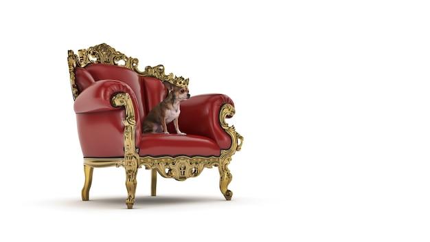 Hund mit krone in einem stuhl 3d-rendering