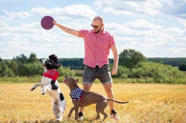 Hunde auf dem gelände trainieren
