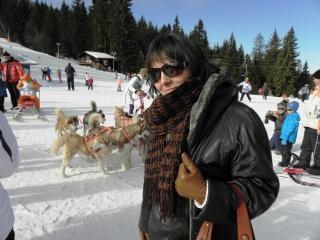 Huskies im bergdorf pampo