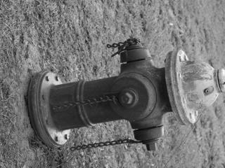 Hydranten, bolzen