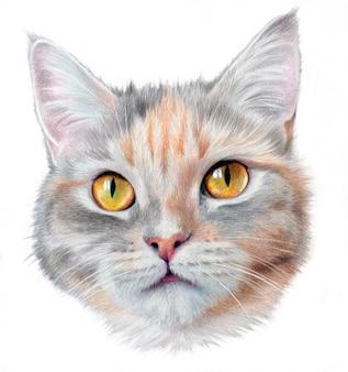 Hyperrealistisches porträt einer katze mit gelben augen. auf einem weißen hintergrund isoliert.