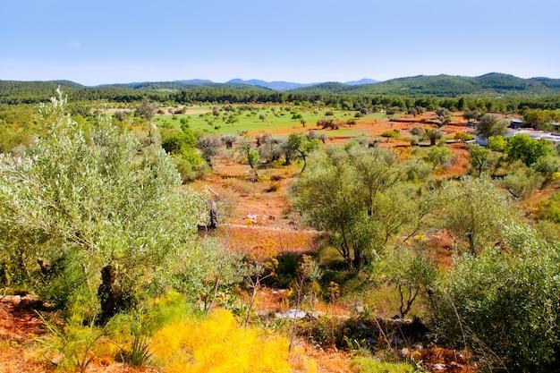 Ibiza insellandschaft mit landwirtschaftsfeldern