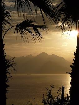 Idylle palm meer urlaub ausblick antalya bäume