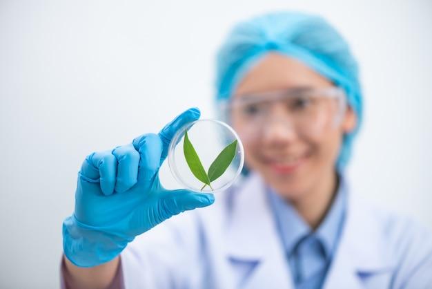Im chemielabor testen die wissenschaftler den naturstoffextrakt, das öl und die biokraftstofflösung.