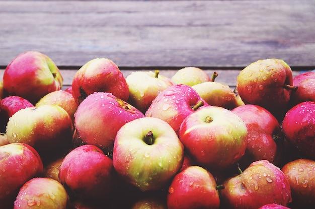 Im herbst im bio-hausgarten gepflückte äpfel