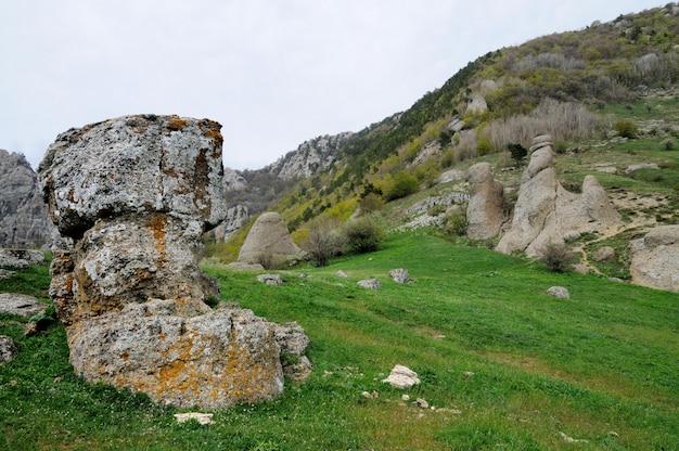 Im vordergrund riesiger stein mit moos bedeckt, bäume am berghang, grünes gras im tal