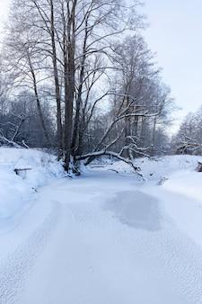 Im winter gefroren der fluss, die flussoberfläche und die bäume sind mit schnee bedeckt