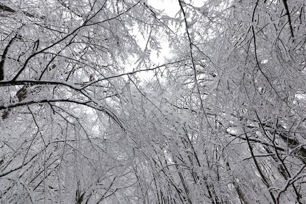 Im winter parken