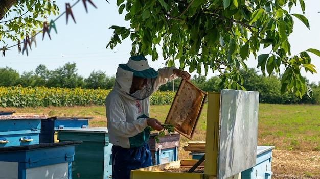 Imker arbeitet mit bienen imker in schutzkleidung arbeitet an einer hausimkerei