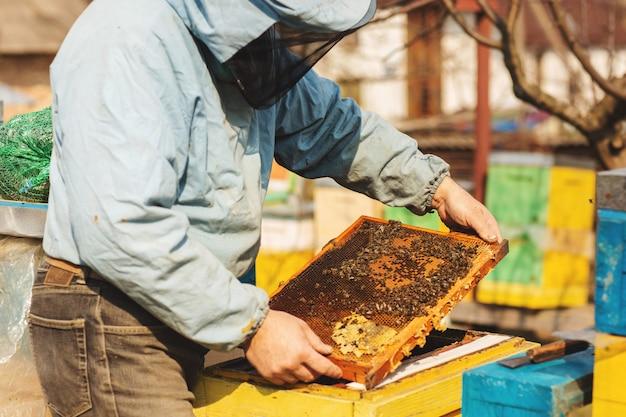 Imker arbeitet mit bienen und bienenstöcken auf dem bienenhaus