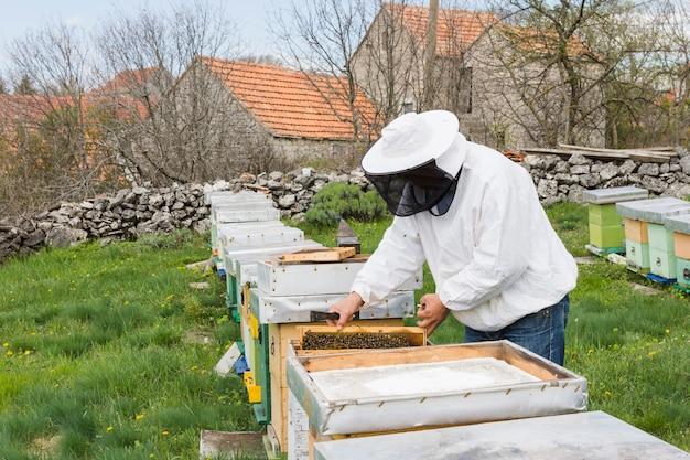 Imker, der honig extrahiert