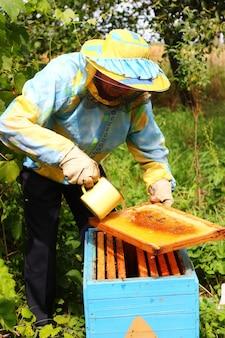 Imker füttert bienen mit zuckersirup