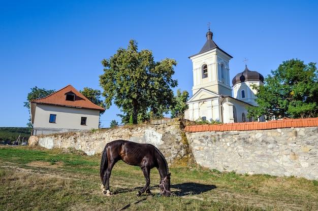 In der nähe der mauern des capriana-klosters, moldawien