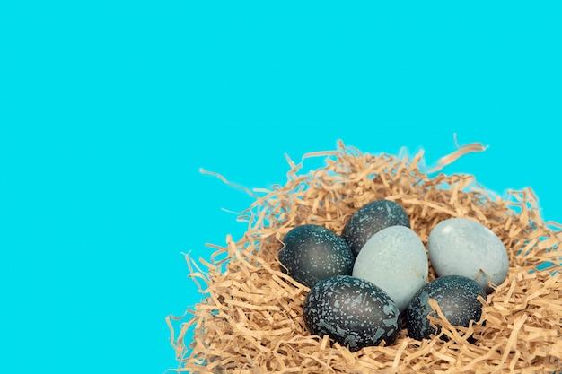 In raumfarbe gemalte ostereier liegen in einem nest auf einem blauen hintergrund mit raum für text