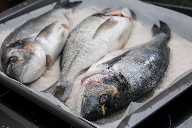 In salz gekochte brassen. gebackener fisch.