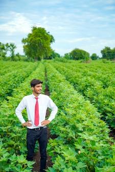 Indischer agronom am baumwollfeld
