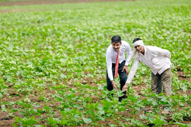 Indischer agronom mit landwirt am baumwollfeld