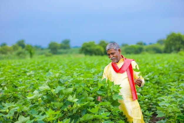 Indischer bauer, der baumwollpflanze in der hand hält und pflanze inspiziert