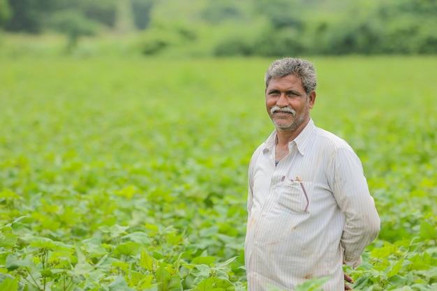 Indischer bauer in baumwollfarm