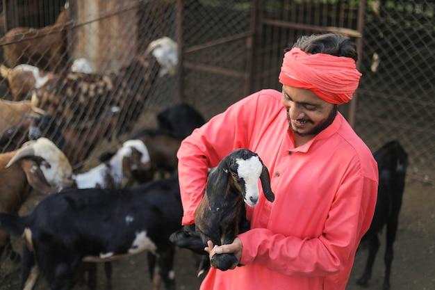 Indischer bauer in der ziegenmilchfarm