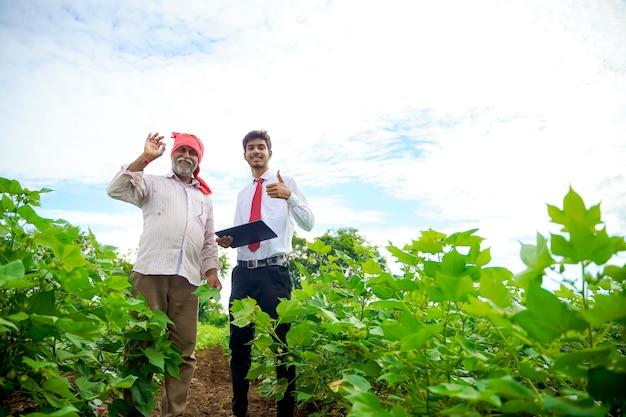 Indischer bauer mit agronom am baumwollfeld, daumen hoch zeigend