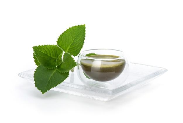 Indischer borretsch, oregano oder plectranthus amboinicus verzweigen grüne blätter und werden mit auf weiß isoliertem wasser extrahiert.