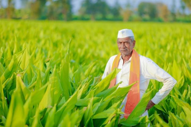 Indischer landwirt am feld