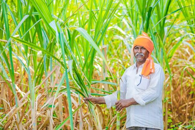 Indischer landwirt am zuckerrohrfeld
