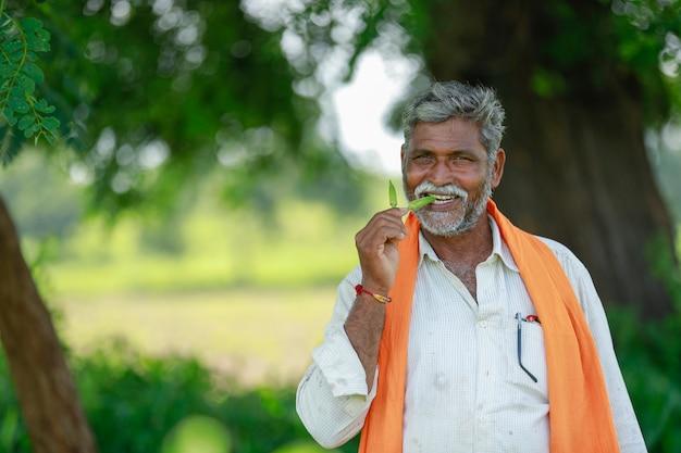 Indischer landwirt, der am feld arbeitet