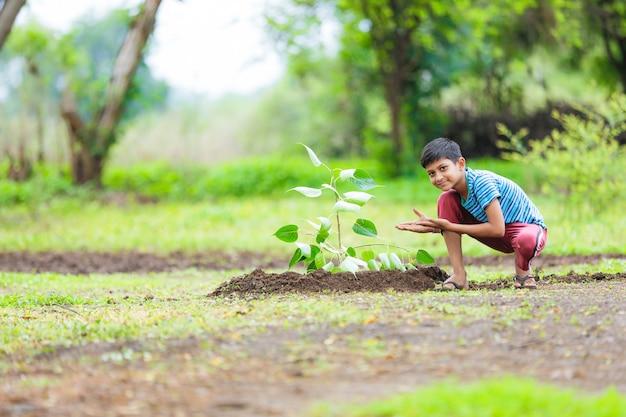 Indisches kind, das einen baum pflanzt