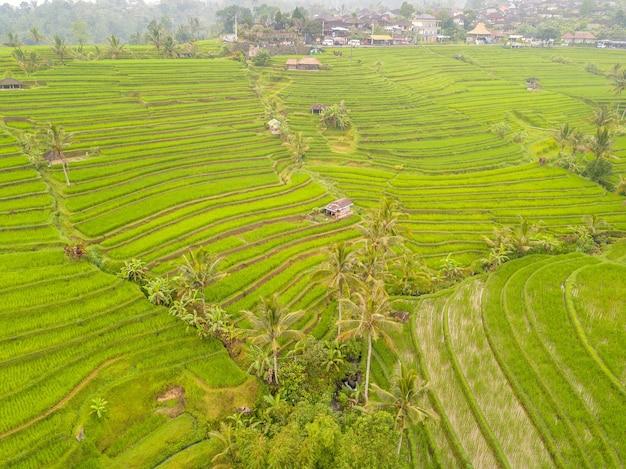 Indonesien. bali-insel. terrassen von reisfeldern nach dem regen. dorf im hintergrund. luftaufnahme