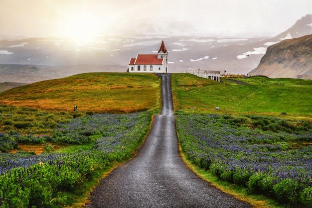 Ingjaldsholl kirche in island und lupinenblumen