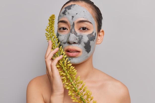 Innenaufnahme einer ernsthaften asiatischen dame wendet eine feuchtigkeitsspendende anti-aging-tonmaske an, die auf mysteriöse weise in die kamera schaut, die wildblumen eng an das gesicht hält, hemdlos auf grau posiert