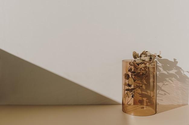 Innendekoration: eukalyptuszweig in hellbrauner glasvase mit sonnenlichtschatten an der wand