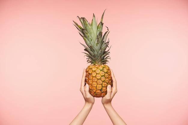 Innenfoto der köstlichen frischen ananas, die von den hellhäutigen händen der hübschen frau gehalten wird, die angehoben werden, während sie über rosa hintergrund aufwirft. konzept für lebensmittel und frisches obst