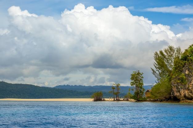 Insel in indonesien. raja ampat. leerer strand am ufer einer tropischen insel. eine einsame hütte versteckt sich hinter den bäumen