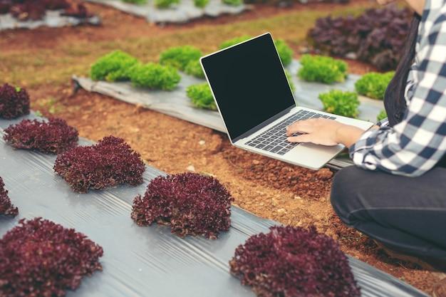 Inspektion der gemüsegartenqualität durch landwirte