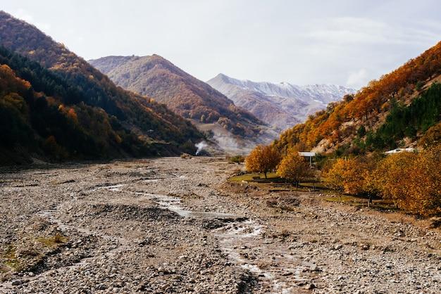 Inspirierende magische natur, berge und pisten sind mit bäumen bedeckt, herbstnatur