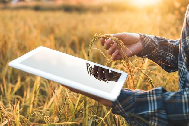 Intelligente landwirtschaft landwirtschaftliche technologie und ökologischer landbau frau, die die forschung nutzt