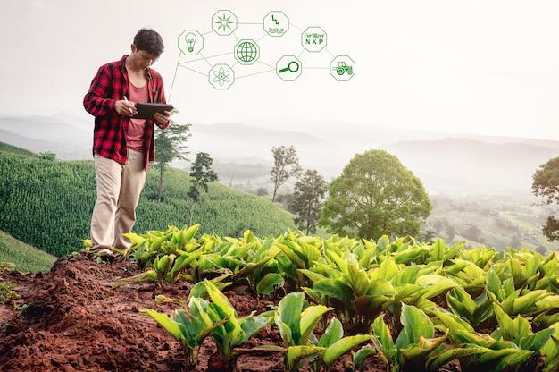 Intelligenter landwirt, der technologie-app in tablette zur überprüfung der wachstumsanalyse durch technologie im landwirtschaftsfeldfarm-smart-farm-konzept verwendet