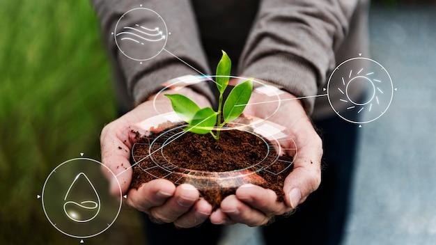 Intelligentes landwirtschafts-iot mit handpflanzbaumhintergrund