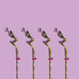 Interessantes muster von bambusstöcken auf violettem hintergrund minimale layoutkomposition