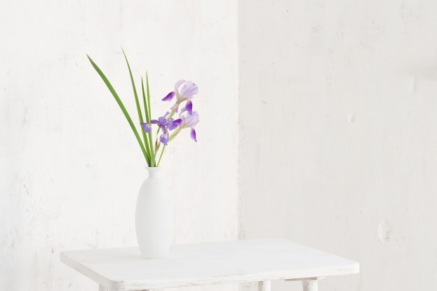 Iris in weißer vase auf weißem hintergrund