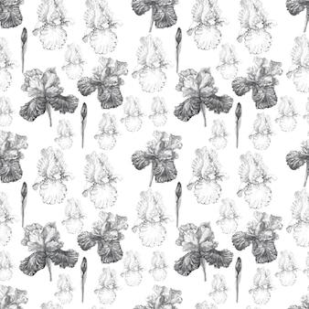 Irisblumen frühling blühende aquarellillustrationshand gezeichnete postkartenhintergrundskizze