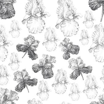 Irisblumen frühling blühende aquarellillustrationshand gezeichnete postkartenhintergrundskizzenhintergrund