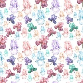 Irisblumen frühling blühende illustration postkarte hintergrundskizze