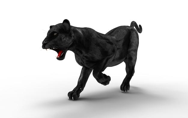 Isolat des schwarzen panthers auf weißem hintergrund, schwarzer tiger, 3d illustration, 3d übertragen