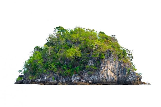 Isolieren sie die insel in der mitte des grünen meeres weißen hintergrund vom hintergrund getrennt